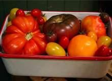Organik gıda çevre için daima iyi midir?