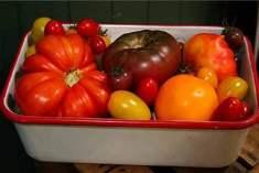 Organik gıdaları yıkarken diğerleri kadar dikkat etmemize gerek var mı?