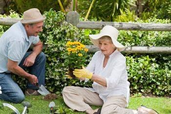Bahçe İşleri ve Hobiler Kalp Krizi Riskini Düşürebilir