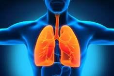 Akciğer Hastalıkları İçin Bitkisel Çareler Var Mıdır?
