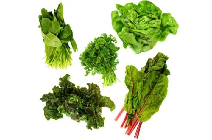 Koyu Yeşil Sebzeler