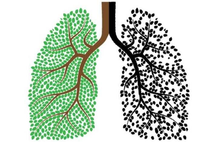 Akciğer Kanseri ve Neden Olan Etmenler