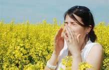 Alerjiler hakkında temel gerçekleri biliyor musunuz?