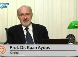Andropozun tedavisi nedir?